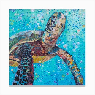 Blue Baby Turtle In The Sea Square Canvas Print