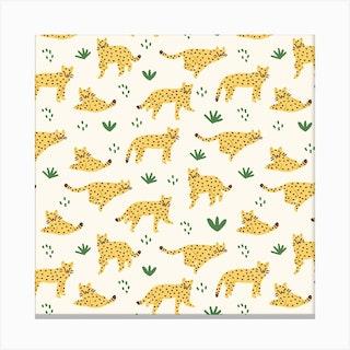 Cheetahs Square Canvas Print