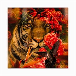 Tiger King Square Canvas Print