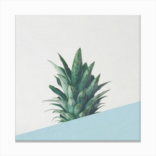 Pineapple Dip II Canvas Print