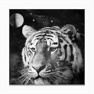 Tiger From The Univers Canvas Print