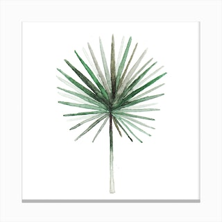 Simple Palm Leaf2 Canvas Print