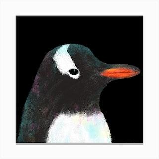 Gentoo Penguin Square Canvas Print