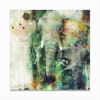 Elephant 2 Square Canvas Print