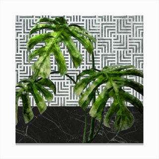 Monstera Leaves on Black Marble and Tiles Canvas Print