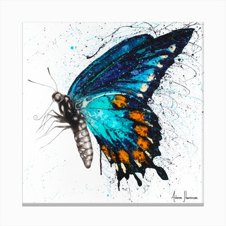 Butterfly Bliss   Square Canvas Print