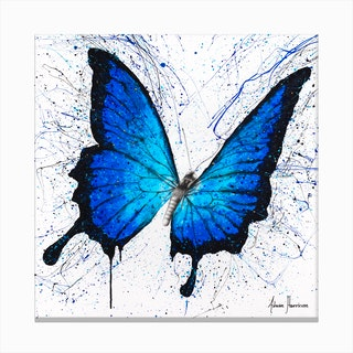 Tropics Of Blue Butterfly Canvas Print