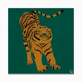 Tiger Doesnt Lose Sleep Square Canvas Print