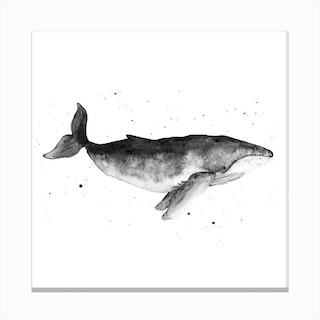 Whale2 Canvas Print