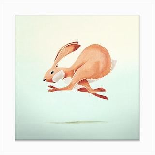 Rabbit  I Canvas Print