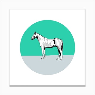 Horse On Green Grey  Square Canvas Print