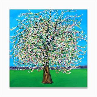Apple Blossom Square Canvas Print
