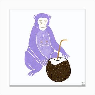 Purple Monkey With Coconut Square Canvas Print