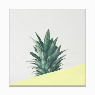 Pineapple Dip III Canvas Print