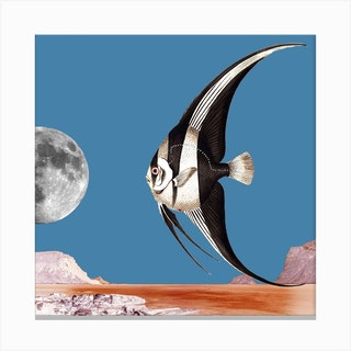 Plenty Of Fish In The Sea Blue Square Canvas Print