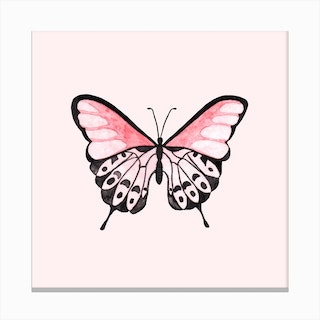 Pink Butterfly 1 Canvas Print