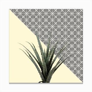 Dracaena Plant on Lemon and Lattice Pattern Wall Canvas Print