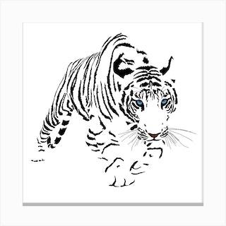White Bengal Tiger White Series Square Canvas Print