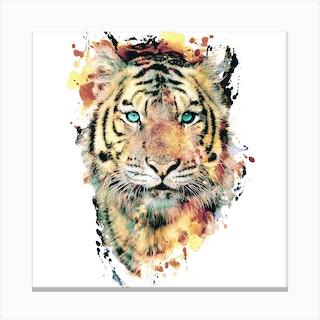 Tiger 2 Square Canvas Print