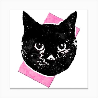 Soft Pink Cat Square Canvas Print