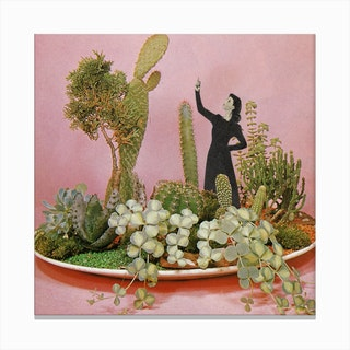The Wonders of Cactus Island Canvas Print