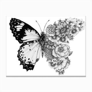 Butterfly in Bloom II Canvas Print