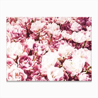 Pink Mood Canvas Print