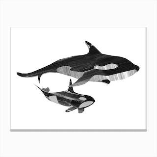 A Swim Together II Canvas Print