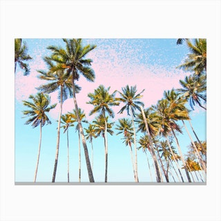 Coconut Palms Canvas Print