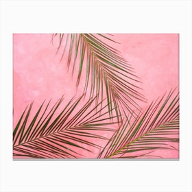 Summer Palm Leaves In Pink Wall Canvas Print