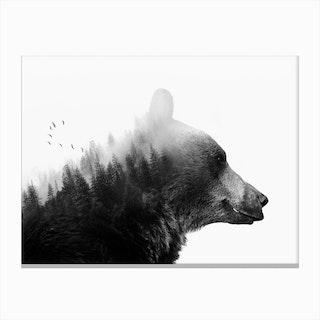 Big Bear Canvas Print