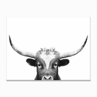 Longhorn BW Canvas Print