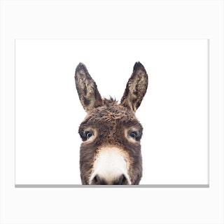 Hello Donkey 2 Canvas Print