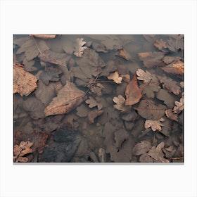 Leavesea Canvas Print