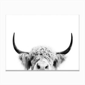 Peeking Cow BW Canvas Print