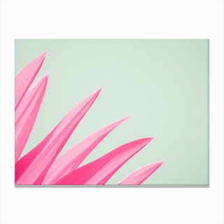 Pink Flower Leaves Canvas Print