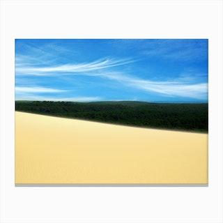 Desert Forest Sky Canvas Print