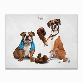Raging Canvas Print