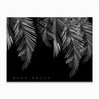 Stay Salty Black Canvas Print