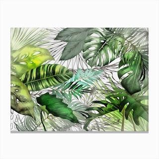 Tropical Foliage 2 Canvas Print