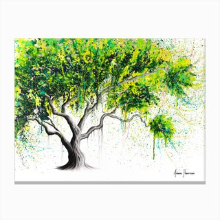 Funky Fig Tree Canvas Print