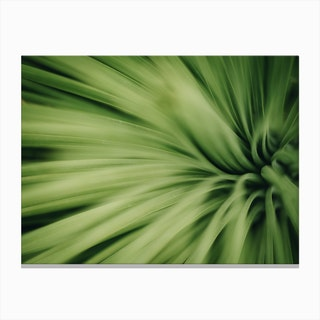 Green Ii Canvas Print