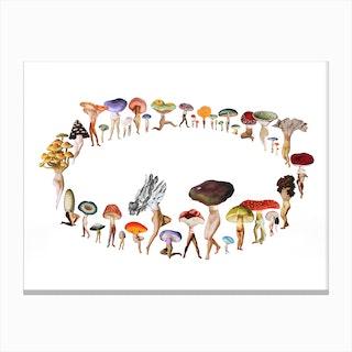 Pixie Ring Canvas Print