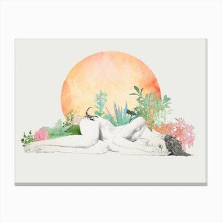 Born In The Sun A Scorpio Study Canvas Print