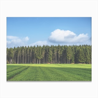 Odenwald Canvas Print