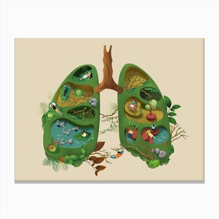 Lung Canvas Print