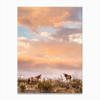 Arizona Wild Horses At Sunset Canvas Print