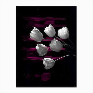 Flower Studies 9 Canvas Print