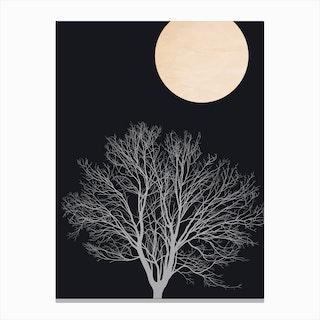 Warm Winter Canvas Print