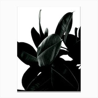Wild Jungle Green Canvas Print